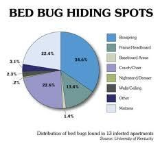 Bed Bugs Hiding Spots